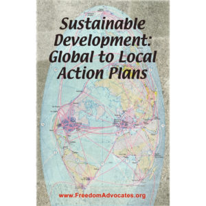 SD Global to Local Action Plans